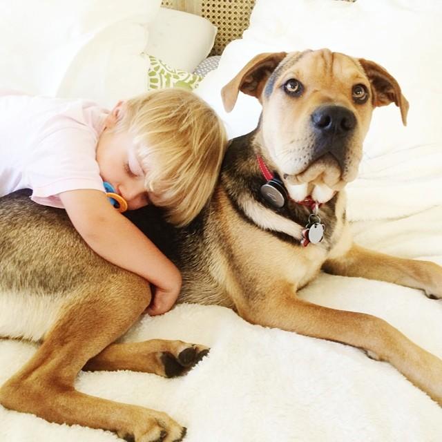crianca-e-cachorro-dormindo-012