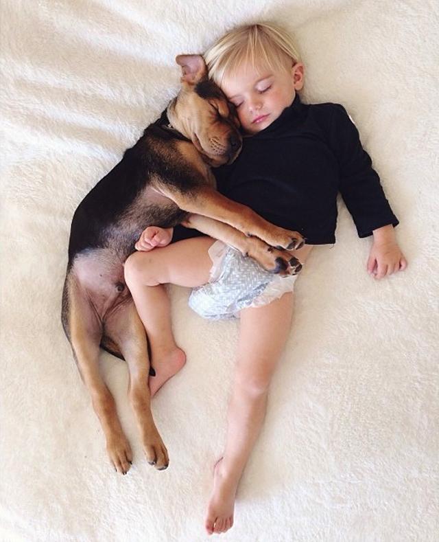 crianca-e-cachorro-dormindo-06