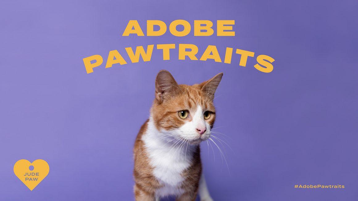 Adobe Pawtraits - Boteco Design