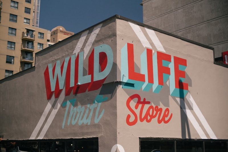 Wildlife Thrift Store - Boteco Design